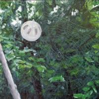 Caught. 16x20. Oil on canvas mounted on panel.